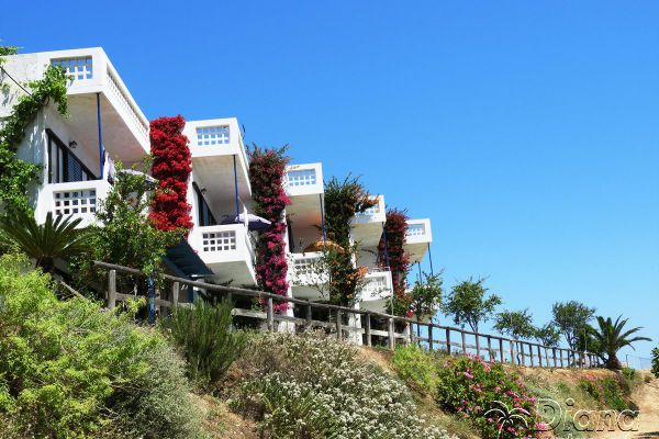diana-apartments-agia-pelagia-crete30229120-B386-6236-72D2-CE4968C75675.jpg